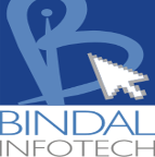 Bindal Infotech - ASP freelancer Jaipur