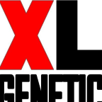 XL Genetic - SEO freelancer Camín real de la mesa