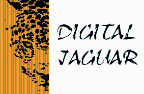 Digital Jaguar - Javascript freelancer État de mexico